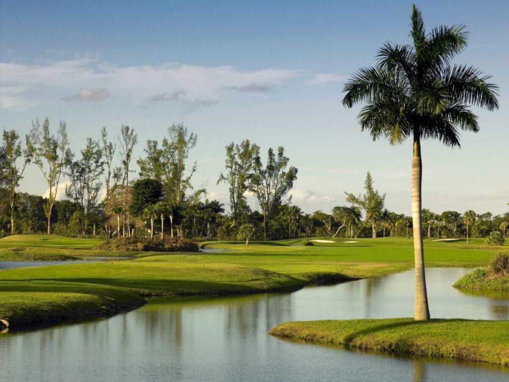Miami Lakes FL-Miami Gardens Metal Roofing Installation & Repair Team